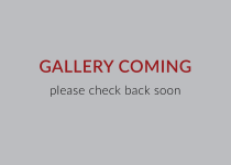 Gallery Coming. Please check back soon.